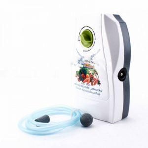 Máy khử độc rau quả thực phẩm Ozone Cathy N202D