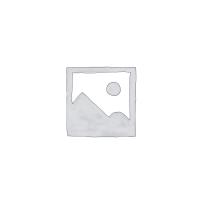 NỒI HẦM ĐIỆN GUANG XING GX-25B, DUNG TÍCH 2.5 LÍT